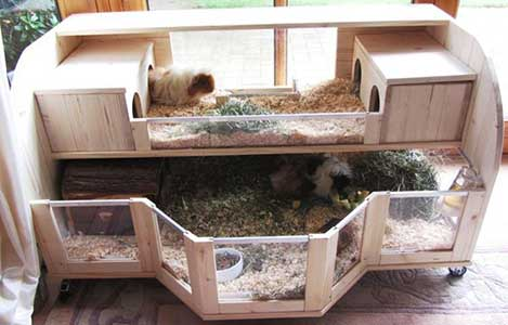 fancy wood guinea pig cage