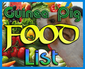 guinea pig food list