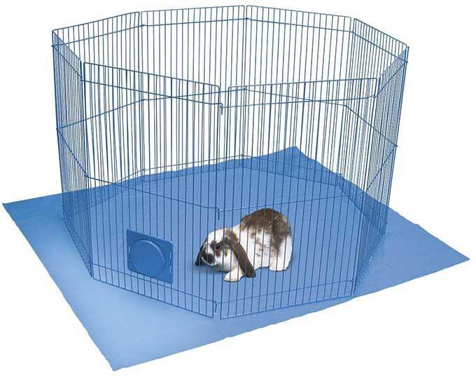 Kaytee metal playpen