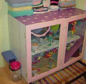 repurpose a cabinet into a guinea pig cage