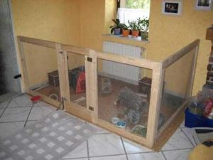 simple corner guinea pig cage