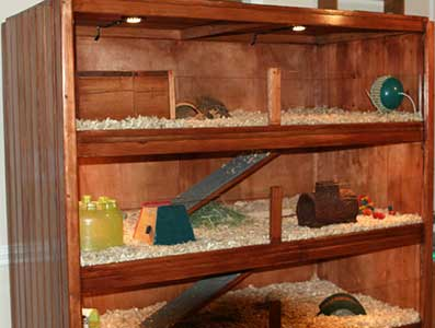 Make your own guinea pig cage abyssinian guinea pig tips for Guinea pig dresser cage