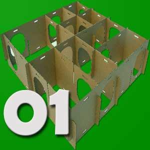 guinea pig maze
