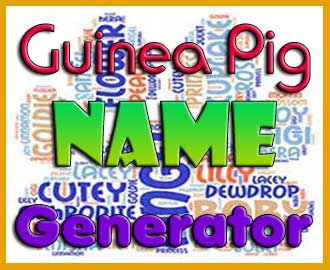 guinea pig name generator
