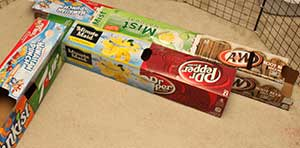 soda pop carton guinea pig tunnels